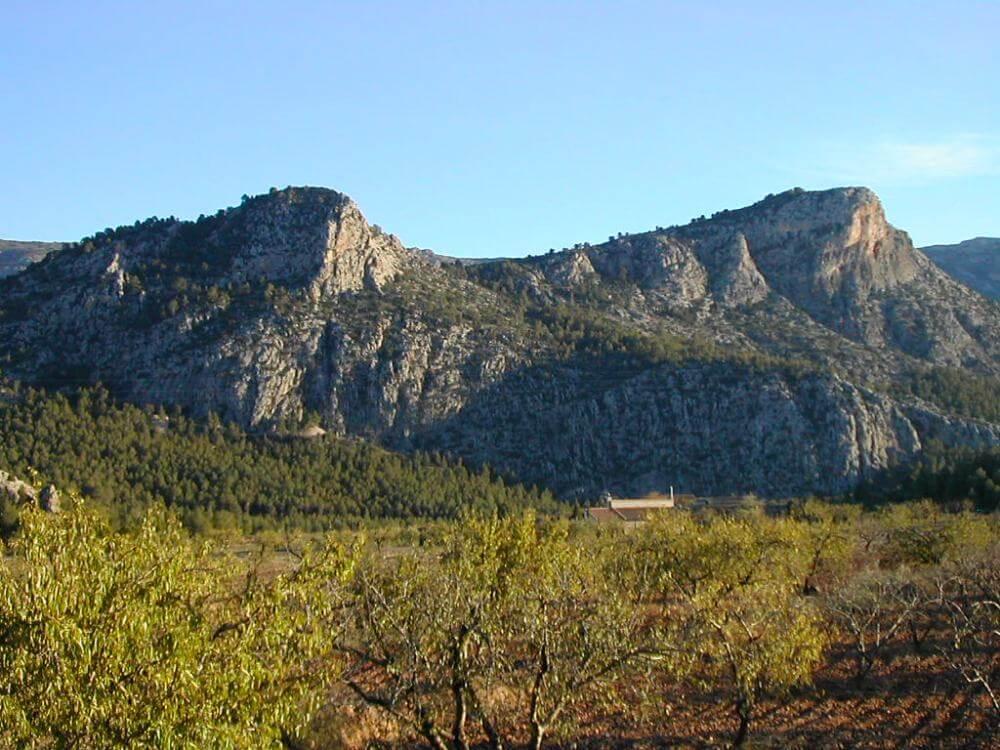 Umbría de Sierra Espuña