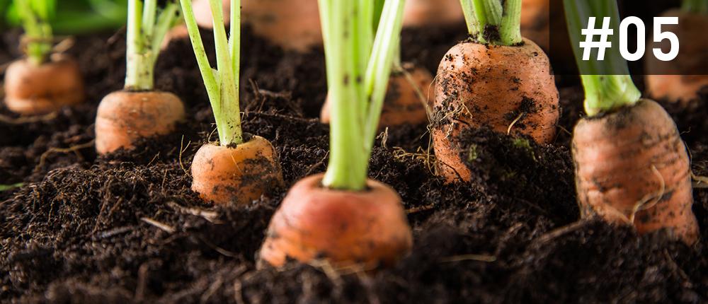 Agroeconatura - Territorio Sierra Espuña